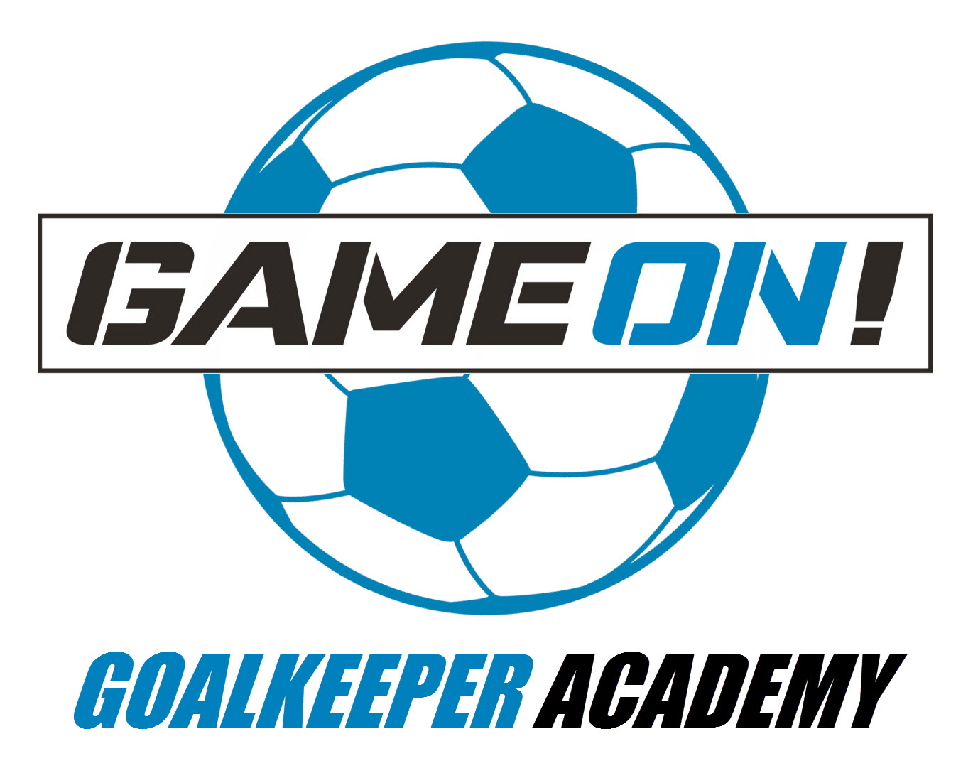 Game On Goalkeeper Academy